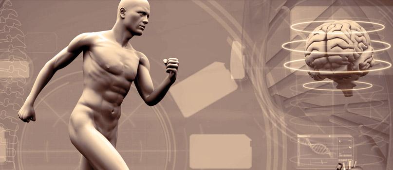 O seu corpo e o exercício: o que mais precisa de saber?